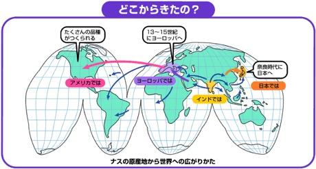 f:id:yachikusakusaki:20170905235207j:plain