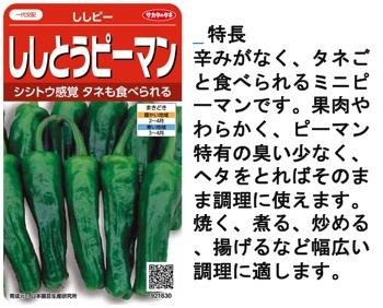f:id:yachikusakusaki:20170908230405j:plain