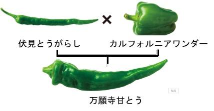 f:id:yachikusakusaki:20170910003617j:plain