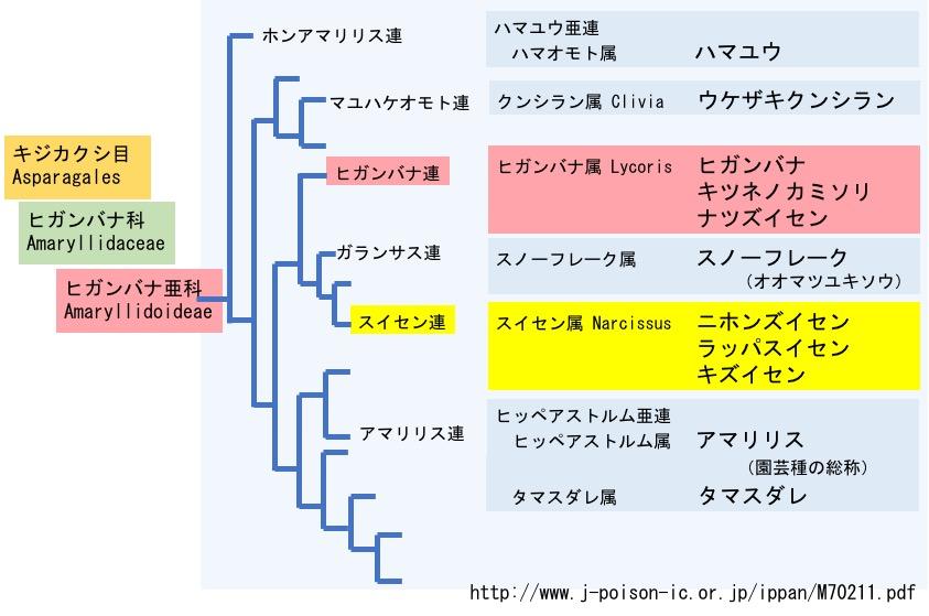 f:id:yachikusakusaki:20170919023942j:plain