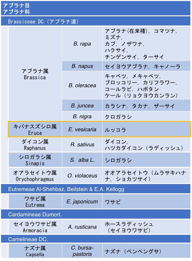 f:id:yachikusakusaki:20170921005900j:plain