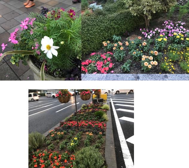 f:id:yachikusakusaki:20170923014918j:plain