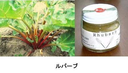 f:id:yachikusakusaki:20170925235141j:plain