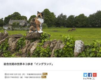 f:id:yachikusakusaki:20171002185611j:plain