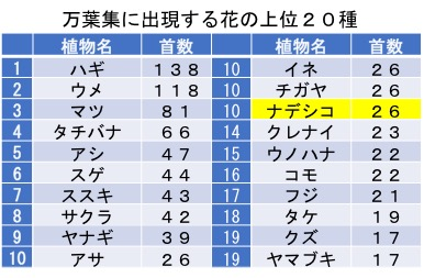 f:id:yachikusakusaki:20171005004044j:plain