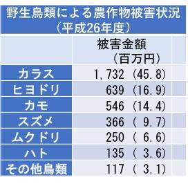f:id:yachikusakusaki:20171006223230j:plain