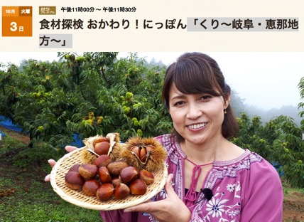 f:id:yachikusakusaki:20171011012009j:plain