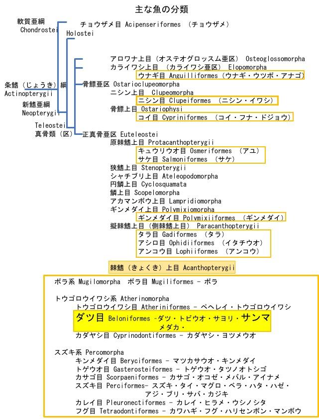 f:id:yachikusakusaki:20171015020054j:plain