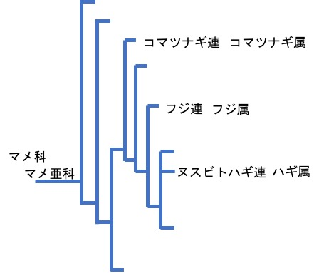 f:id:yachikusakusaki:20171018010841j:plain