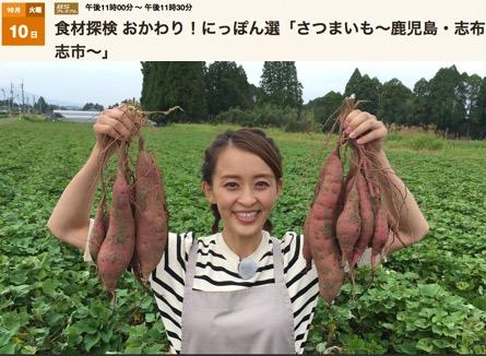 f:id:yachikusakusaki:20171018234149j:plain
