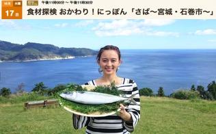 f:id:yachikusakusaki:20171022233546j:plain