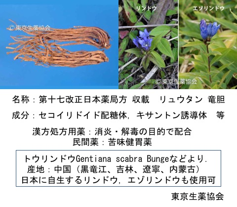 f:id:yachikusakusaki:20171030222133j:plain