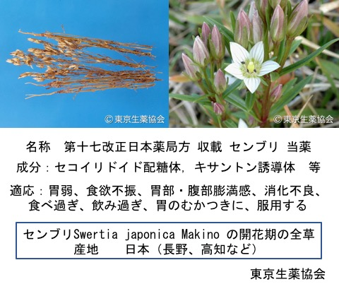 f:id:yachikusakusaki:20171030232806j:plain