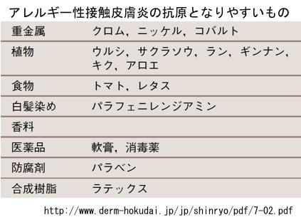 f:id:yachikusakusaki:20171105165512j:plain