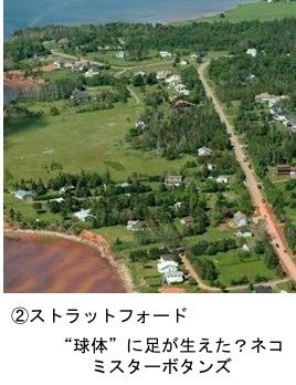 f:id:yachikusakusaki:20171107170812j:plain