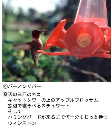 f:id:yachikusakusaki:20171107175122j:plain
