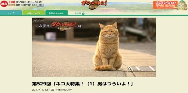 f:id:yachikusakusaki:20171111215349j:plain