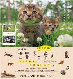 f:id:yachikusakusaki:20171111225100j:plain