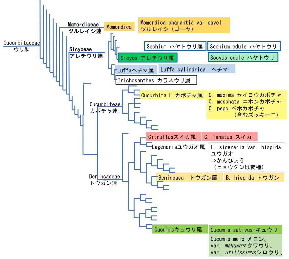 f:id:yachikusakusaki:20171114015313j:plain