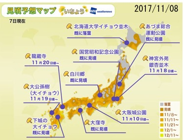 f:id:yachikusakusaki:20171117191816j:plain