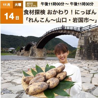 f:id:yachikusakusaki:20171119005109j:plain