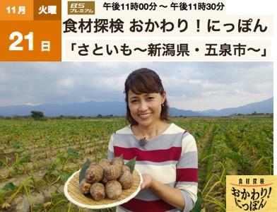f:id:yachikusakusaki:20171122223205j:plain