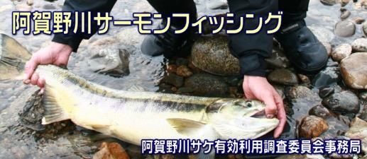 f:id:yachikusakusaki:20171122234604j:plain