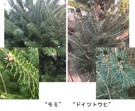 f:id:yachikusakusaki:20171124004839j:plain