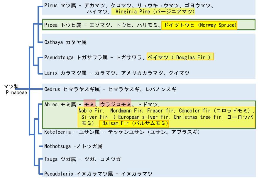 f:id:yachikusakusaki:20171124020949j:plain