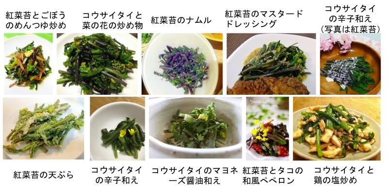 f:id:yachikusakusaki:20171128004415j:plain