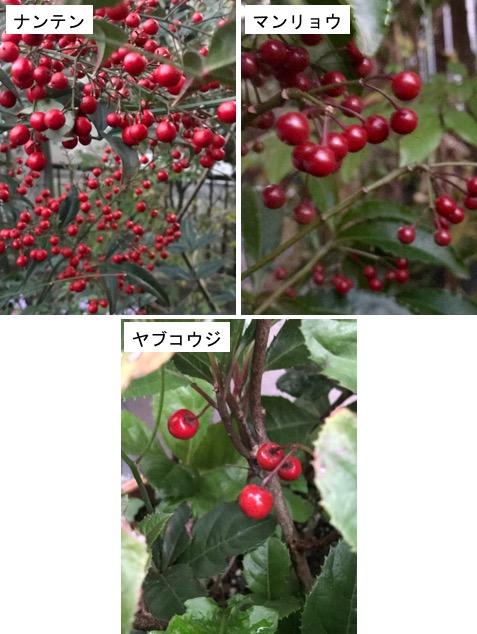 f:id:yachikusakusaki:20171207011417j:plain