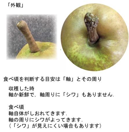 f:id:yachikusakusaki:20171221015024j:plain