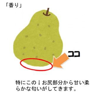 f:id:yachikusakusaki:20171221015048j:plain