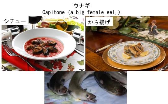 f:id:yachikusakusaki:20171224235353j:plain