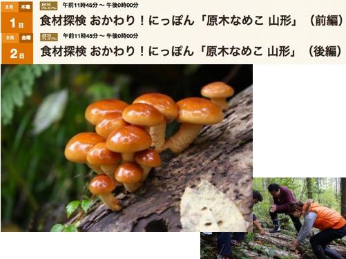 f:id:yachikusakusaki:20180204005916j:plain
