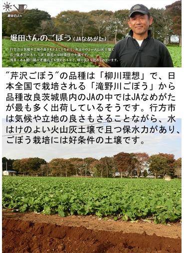f:id:yachikusakusaki:20180207231132j:plain