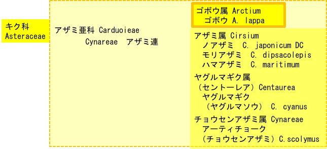 f:id:yachikusakusaki:20180210012634j:plain