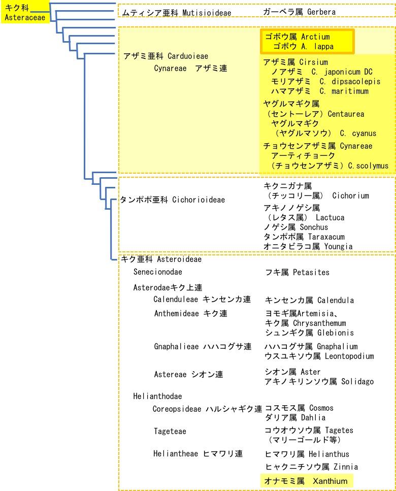 f:id:yachikusakusaki:20180210033520j:plain