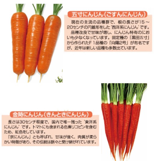 f:id:yachikusakusaki:20180215022728j:plain