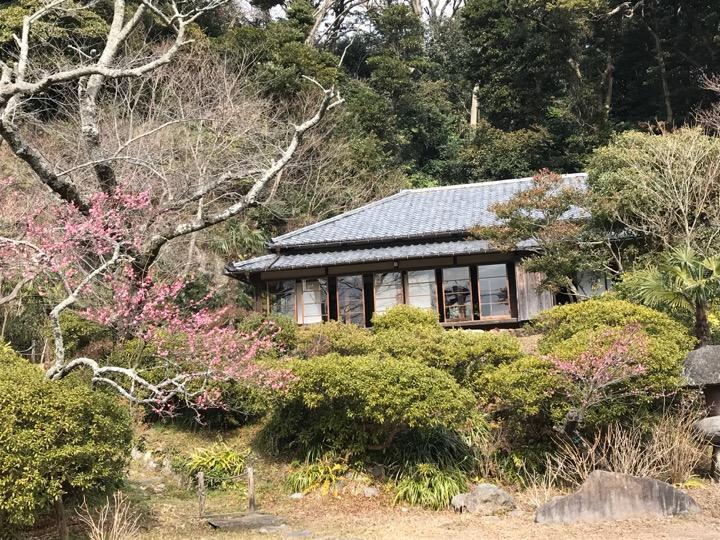 f:id:yachikusakusaki:20180216210741j:plain