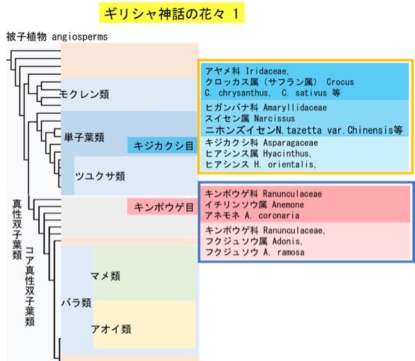 f:id:yachikusakusaki:20180221231615j:plain