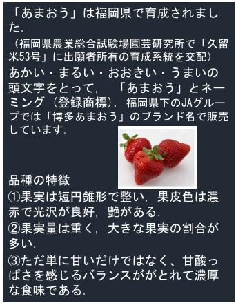 f:id:yachikusakusaki:20180310233145j:plain