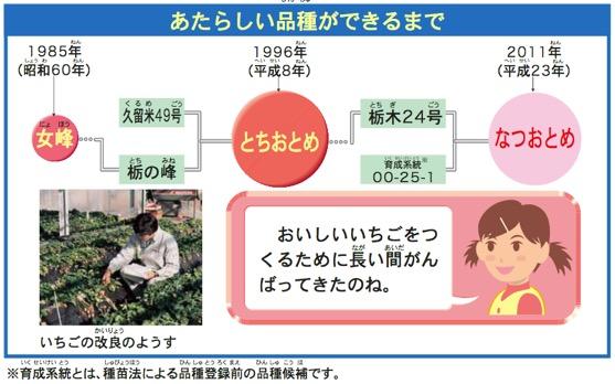 f:id:yachikusakusaki:20180311000937j:plain