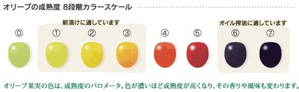 f:id:yachikusakusaki:20180317004301j:plain