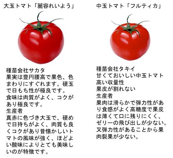 f:id:yachikusakusaki:20180412023649j:plain
