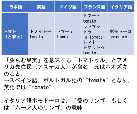f:id:yachikusakusaki:20180412025200j:plain