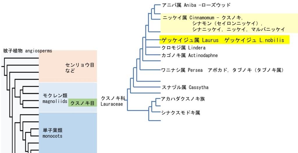 f:id:yachikusakusaki:20180503013517j:plain