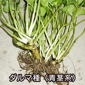 f:id:yachikusakusaki:20180506014031j:plain