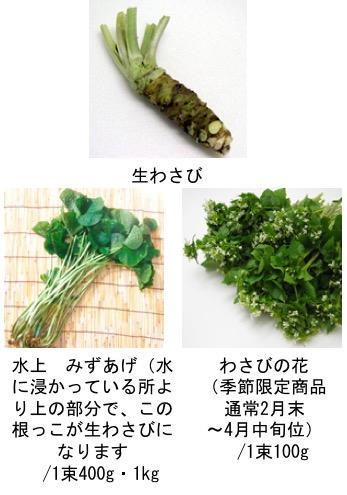 f:id:yachikusakusaki:20180506162839j:plain