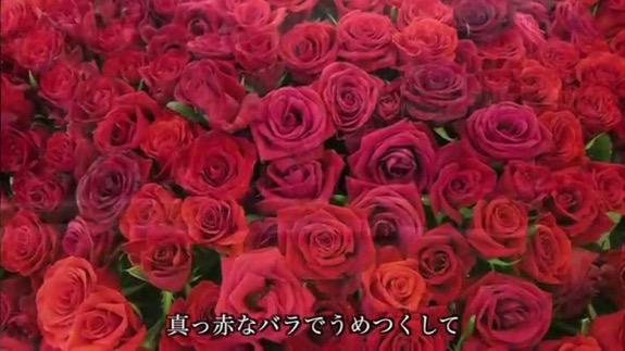 f:id:yachikusakusaki:20180513225919j:plain